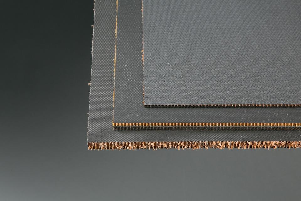 Carbon Fiber/Honeycomb Sandwich Panels